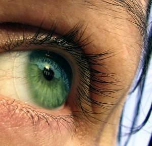 Contactul vizual